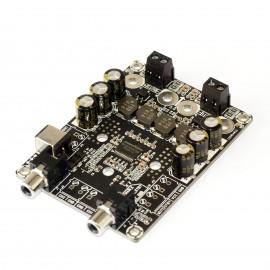 2 x 30 Watt Class D Audio Amplifier Board -TPA3118 (for Gaming Kiosks)